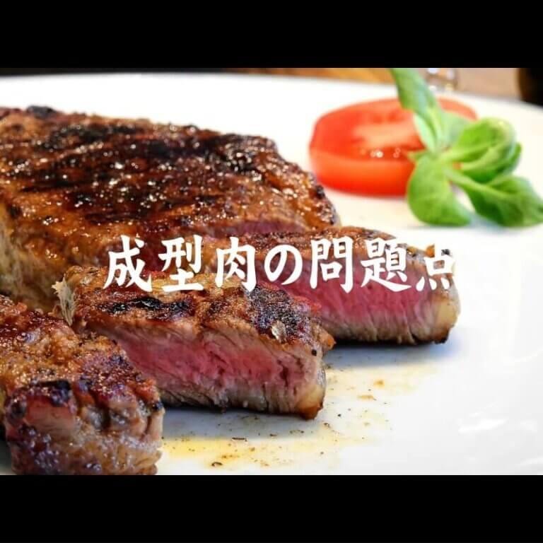 成型肉の問題点
